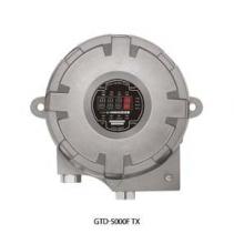 Thiết bị dò khí oxy và khí độc hại GTD-5000F - Gastron VietNam
